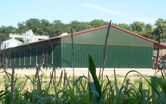 Neubau eines Getreidelagers mit zwei Nasszellen und Trockner